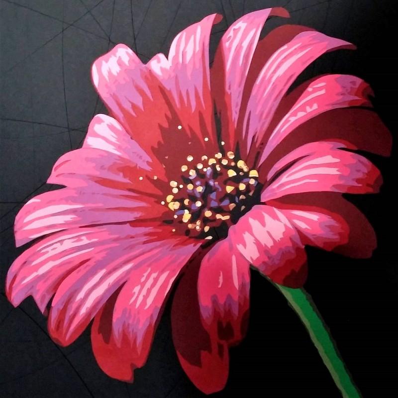 Asteraceae ou fleur de soucis rose rouge. fond noir. Découpage collage papier Carole b