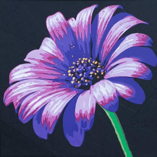 Asteraceae ou fleur de souci violet bleu. fond noir. Découpage collage papier Carole b