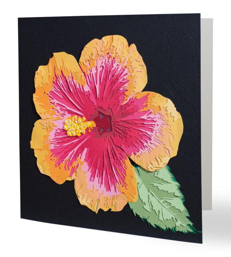 Hibiscus Scalpel Et Papier
