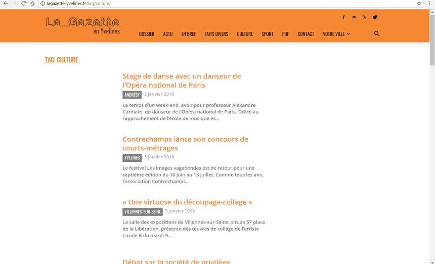 La-gazette-des-Yvelines-siteweb-annonce-exposition-villennes-decoupage-collage-papier